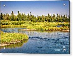 Madison River Acrylic Print
