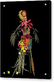 Maga Bacifer Acrylic Print by Catlin Harrison