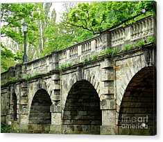Magdalen's Ancient Bridge Acrylic Print by Anne Gordon