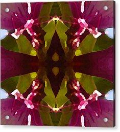 Magent Crystal Flower Acrylic Print by Amy Vangsgard