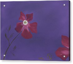 Magenta Flower On Plum Background Acrylic Print