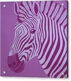Magenta Zebra Acrylic Print