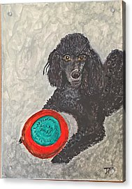 Maggie And Her Frisbee Acrylic Print