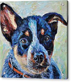 Acrylic Print featuring the painting Maggie Mae by Li Newton