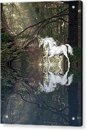 Acrylic Print featuring the photograph Magic by Diane Schuster