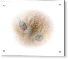 Magic Eyes Acrylic Print