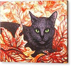Magic In Fall Leaves Acrylic Print