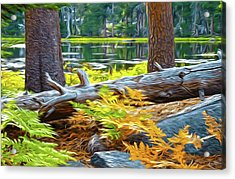 Magic Light Lake Acrylic Print