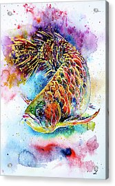Magic Of Arowana Acrylic Print