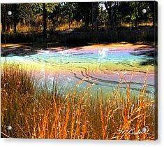 Magic Pond Acrylic Print by Melissa Wyatt