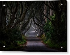 Magic Road Acrylic Print by Piotr Galus