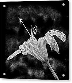 Magic Wand 3 Acrylic Print by Michael Taggart II