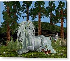 Magic Woodland Acrylic Print by Corey Ford