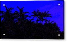 Magical Miami Acrylic Print by Lessandra Grimley