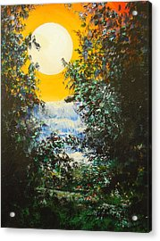 Magical Moonlight Acrylic Print by Dan Whittemore