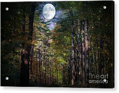 Magical Moonlit Forest Acrylic Print by Judy Palkimas