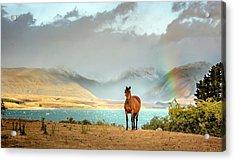 Acrylic Print featuring the photograph Magical Tekapo by Chris Cousins