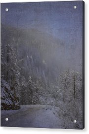 Acrylic Print featuring the photograph Magical Winter Day by Ellen Heaverlo