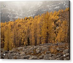 Magnificent Fall Acrylic Print