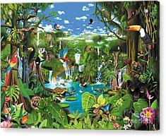 Magnificent Rainforest Acrylic Print by Gerald Newton