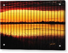 Acrylic Print featuring the photograph Magnificent Sunrise Swim by Bill Kesler