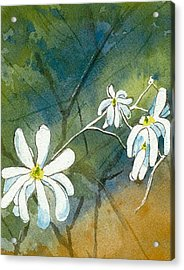Acrylic Print featuring the painting Magnolia 3 Of 3 by Lynn Babineau