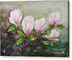 Magnolia Blossom - Painting Acrylic Print by Veronica Rickard