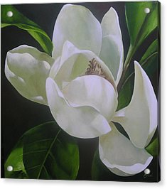 Magnolia Light Acrylic Print