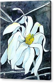 Acrylic Print featuring the painting Magnolia by Lynn Babineau