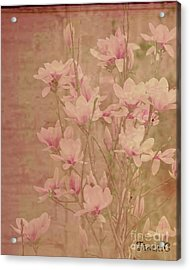 Acrylic Print featuring the photograph Magnolia Nostalgia by Traci Cottingham