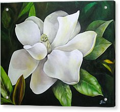 Magnolia Oil Painting Acrylic Print by Chris Hobel