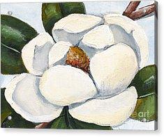 Magnolia On Blue Acrylic Print by Elaine Hodges