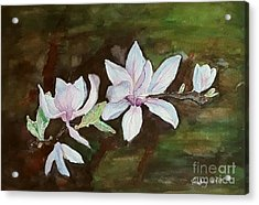 Magnolia - Painting  Acrylic Print by Veronica Rickard