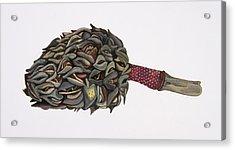 Magnolia Seedpod Acrylic Print