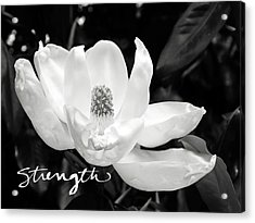 Magnolia Strong- By Linda Woods Acrylic Print by Linda Woods