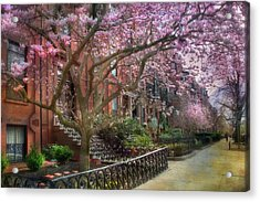 Magnolia Trees In Spring - Back Bay Boston Acrylic Print