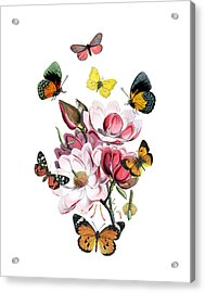 Magnolia With Butterflies Acrylic Print