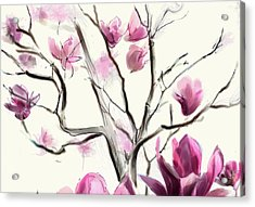 Magnolias In Bloom Acrylic Print