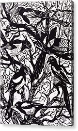 Magpies Acrylic Print by Nat Morley