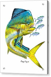 Mahi Digital Acrylic Print by Carey Chen
