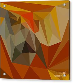 Mahogany Brown Abstract Low Polygon Background Acrylic Print