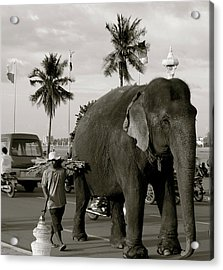 Acrylic Print featuring the photograph Mahout And Elephant by Louise Fahy