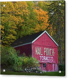 Mail Pouch Tobacco Square Acrylic Print by Bill Wakeley