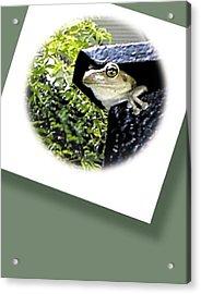 Mailbox  Cameo Acrylic Print