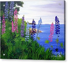 Maine Bay Lupine Flowers Acrylic Print by Laura Tasheiko