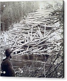 Maine Logging -  C 1903 Acrylic Print by International  Images