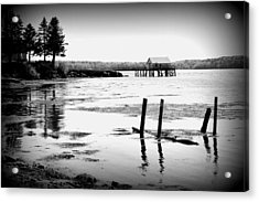 Maine Reflections Acrylic Print by Catherine Reusch Daley