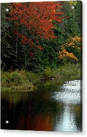 Maine Stream In The Fall Acrylic Print