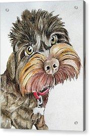 Maisie Moo Acrylic Print