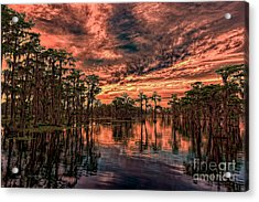 Majestic Cypress Paradise Sunset Acrylic Print